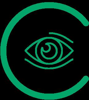 icon indicating Urban Sensing - sensing the visual arena - SYN-RG-Ai